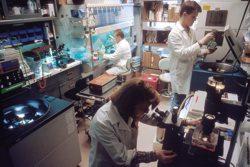 A Modern Research Laboratory